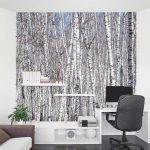 fototapetas miškas